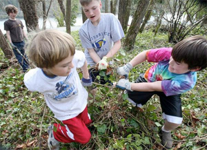 Blakely Elementary students yank ivy from Blakely Harbor Park on Wednesday