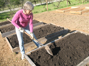 Dawn Snider digs in at the Johnson Farm community garden