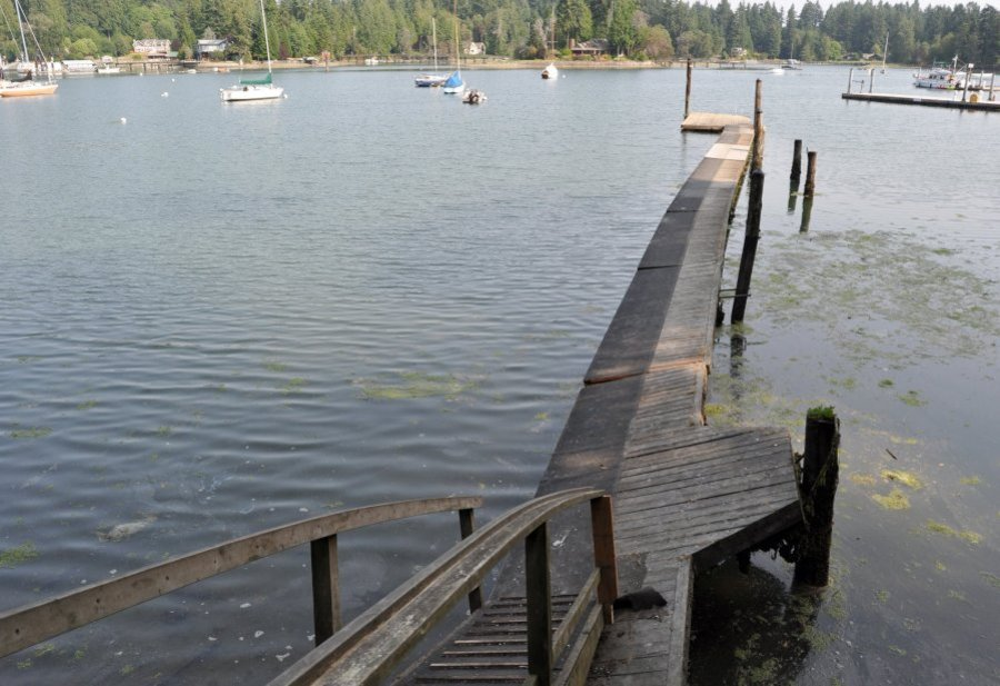 The island's park district received a grant to replace the Hidden Cove dock, which has been closed because of safety concerns. Photo by Tristan Baurick/Kitsap Sun