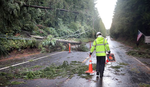 John Kaster from Kitsap County Public Works places hazard cones on the Seabeck Highway across from the Kitsap Rifle and Revolver Club on Tuesday. Downed trees pulled down power lines. (LARRY STEAGALL / KITSAP SUN)