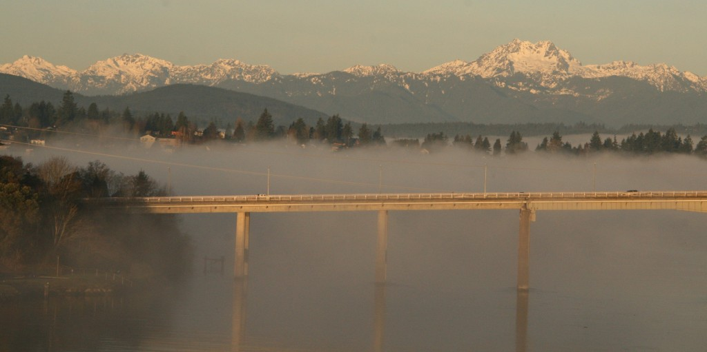 A beautiful fog rolled up the Port Washington Narrows this morning.