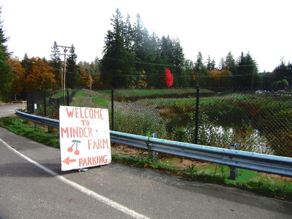 Beth Cochran, near the Corn Maze in East Bremerton.