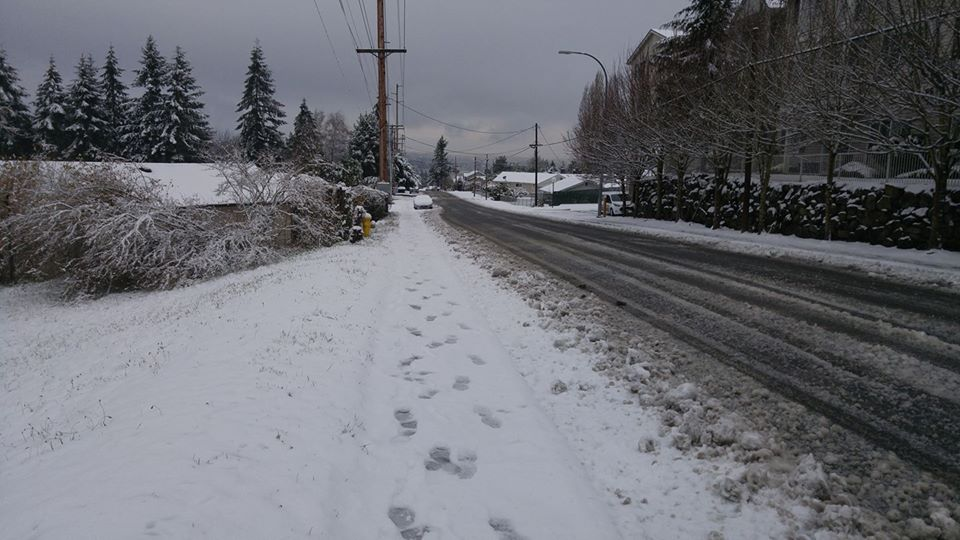 Holly Renee Bish: This is East Bremerton at the corner of Sheridan and Schley. I am looking down Schley.