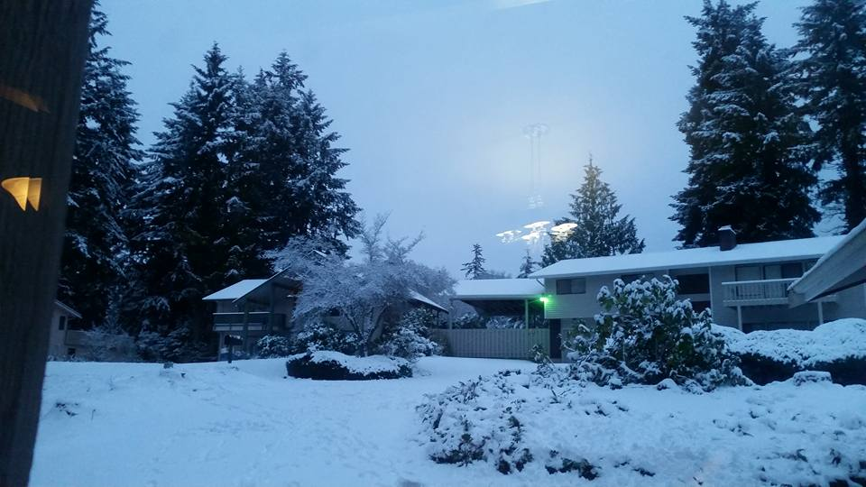 Heather L Bonney Grow: Our neighborhood in E. Bremerton near Pinecrest Elementary.