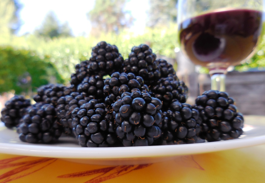 Ежевичное вино рецепт
