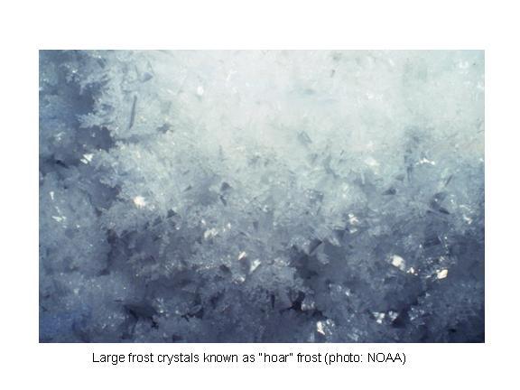 hoar_frost