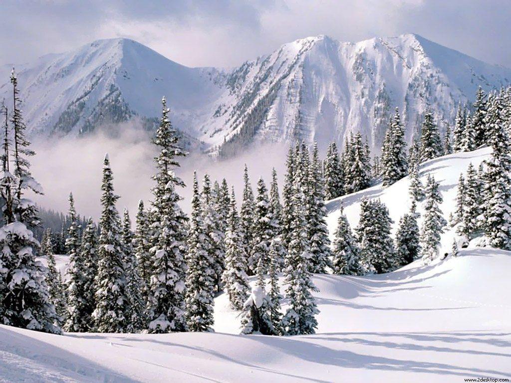 Winter-Wonderland-1-1024x768