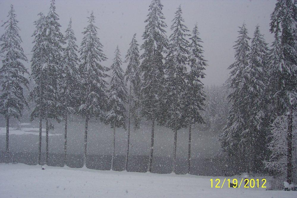 Big Snow Storm 011