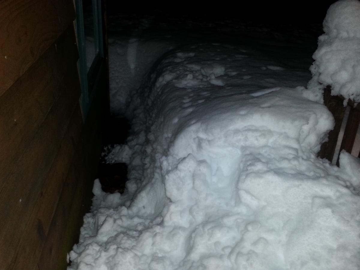 snowy kitsap 2