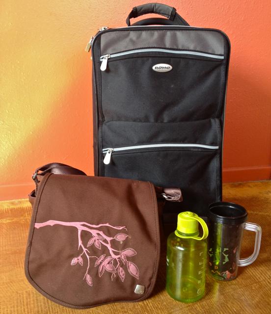 My traveling necessities