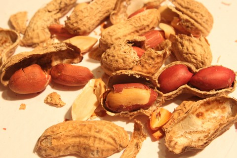 Peanut-Shells-Broken_Smashed_43299-480x320
