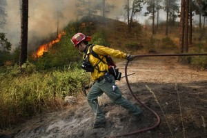 Brandon Gardner, a firefighter with Snohomish County Fire District 7, pulls a water hose into position while helping prevent a wildfire from spreading to a nearby homeowner's property near Okanogan, Wash., on Saturday, Aug. 22, 2015. (Ian Terry /The Herald via AP) MANDATORY CREDIT