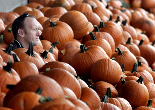 Brian Dodge of Poulsbo is engulfed by orange pumpkins as he waits for his bus at the Central Market in Poulsbo. (LARRY STEAGALL / KITSAP SUN)