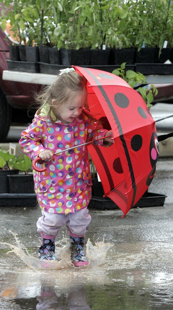 Ayla Hubbs,3, of Poulsbo jumps in a puddle at the Silverdale Farmers Market as her mom Nona shops for sage plants. (LARRY STEAGALL / KITSAP SUN)