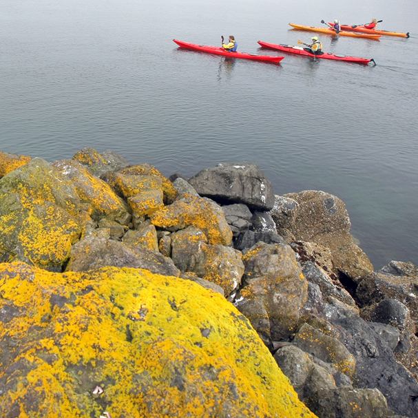 Mossy rocks frame kayakers in Port Gamble. (LARRY STEAGALL / KITSAP SUN)