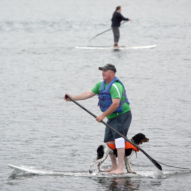 Jim Zimny and his dog Trig compete in the stand up paddle at the Poulsbo Waterfront Park during the 3rd of July festivities. (LARRY STEAGALL / KITSAP SUN)
