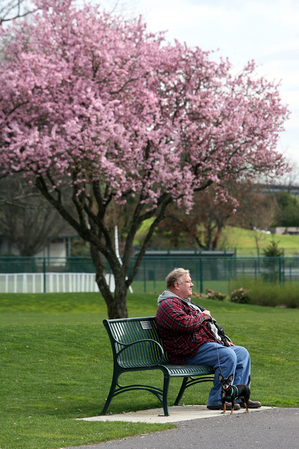 Brad Gihl of Bremerton enjoys the spring weather as he relaxes on a bench with his dog Vonnie at Lions Park in Bremerton on Thursday. (LARRY STEAGALL / KITSAP SUN)