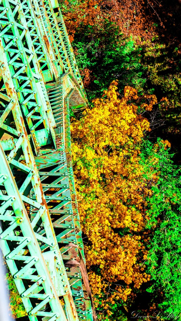 """Fall At Steel Bridge"" by Deanna Alley"