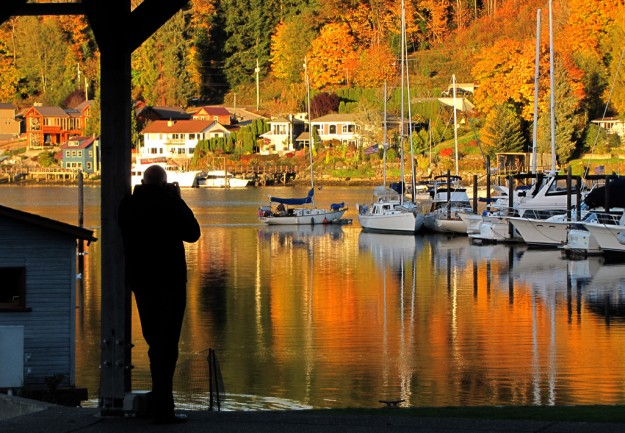 Fall reflections in Gig Harbor. by Larry Steagall