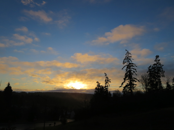 "Sunrise Austerbruin Park in Poulsbo"" by Emily Wilmot"