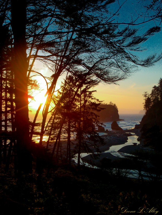 Ruby Beach by Deena Alley