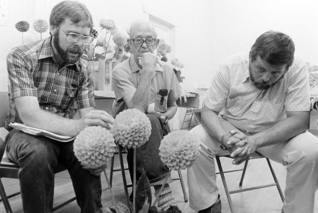 8/20/83 Dahlia Show Steve Zugschwerdt / Bremerton Sun