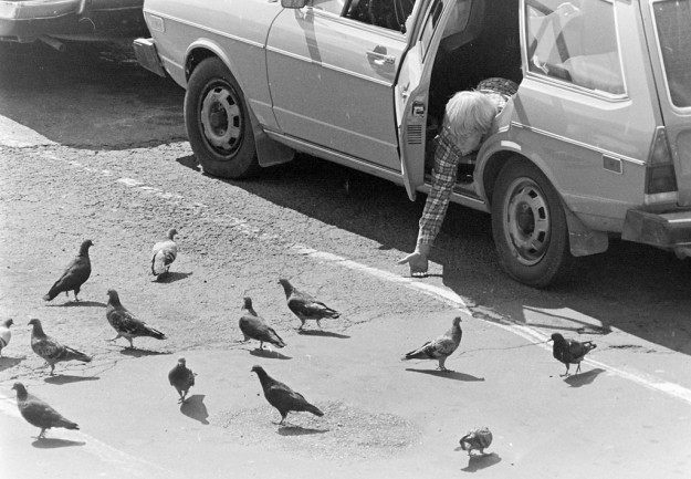 "August 31, 1997 Guy Feeding Pigeons **Note from Meegan: This negative sleeve simply said ""RV leaving Ferry, and it was a whole shoot of an RV leaving a ferry, but right at the end were three shots of man feeding pigeons, these photos were much more interesting than the images of an RV leaving the ferry.***"