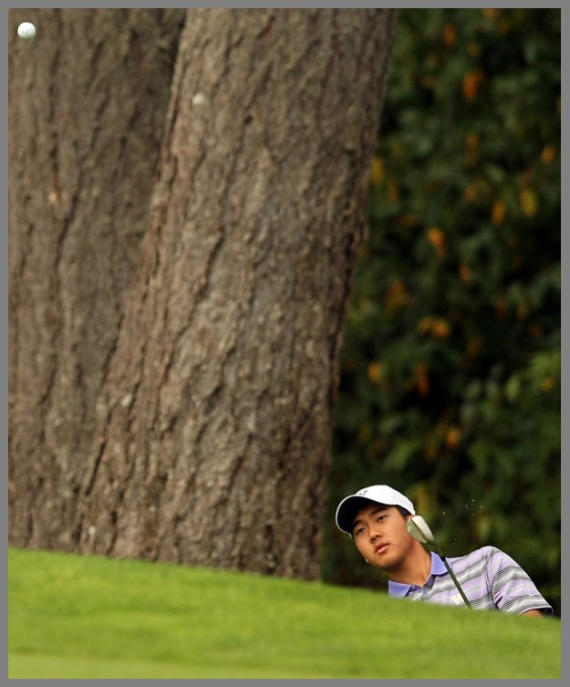 UW's Kevin Kwon chips a shot onto the green during the Husky Invitational at Gold Mountain on Tuesday, September 23, 2014. (MEEGAN M. REID / KITSAP SUN)