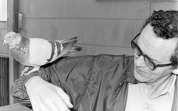 08/08/75 Oscar and Pigeon