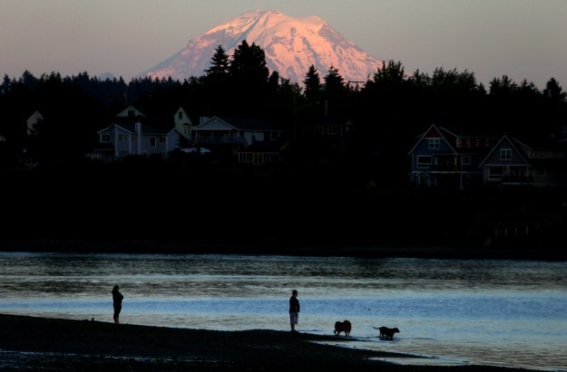Mount Rainier shines at sunset as dogs play in the water off Lions Park in East Bremerton. LARRY STEAGALL / KITSAP SUN
