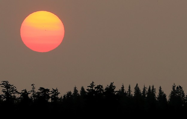 As the sun sinks toward the tree tops, smoke and haze start to give it a pink hue as seen from Salsbury Point Park in North KItsap on Wednesday. (MEEGAN M. REID / KITSAP SUN)
