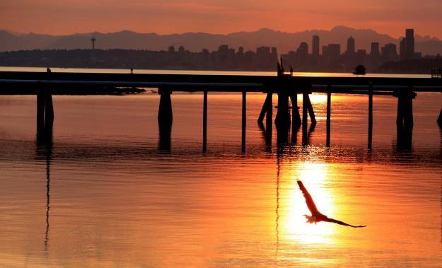 August Sunrise by Noelle Morris