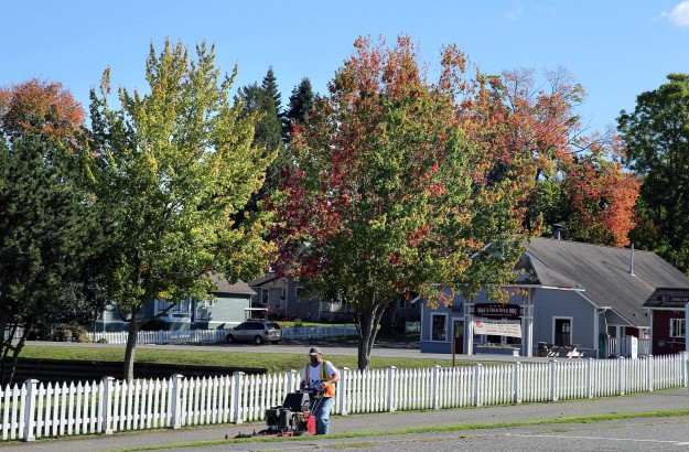 The trees are just beginning to turn color of fall at Port Gamble on Tuesday, The week of cold night will help the process. LARRY STEAGALL / KITSAP SUN