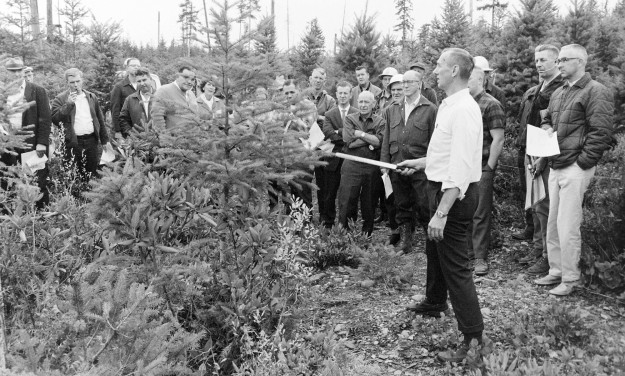 10/27/67 Christmas Tree Tour Richard Ellis / Bremerton Sun