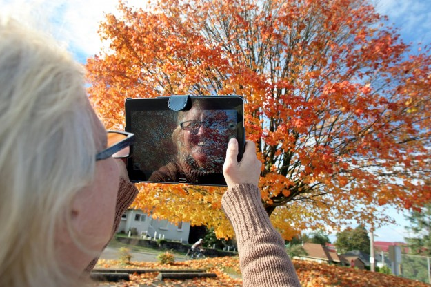 Jacque Watkins of Bremerton documents the stages of fall on a tree at 11th and Ohio in Bremerton. LARRY STEAGALL / KITSAP SUN