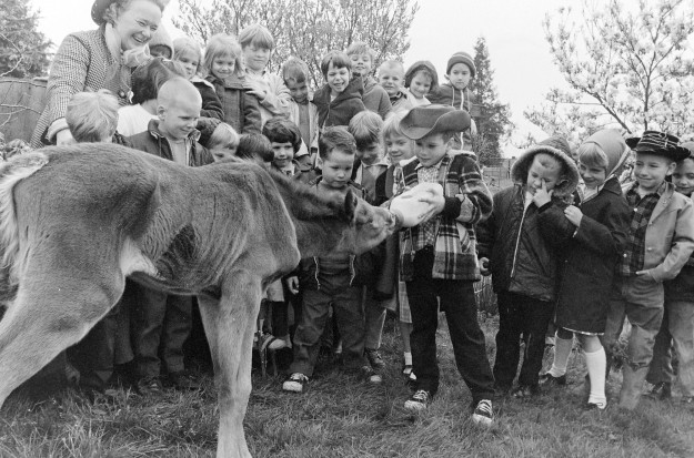 04/04/68 Kindergarten Kids With Filly