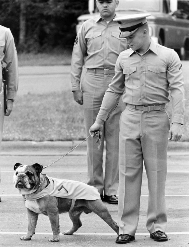 06/07/67 Chesty PFC Bulldog