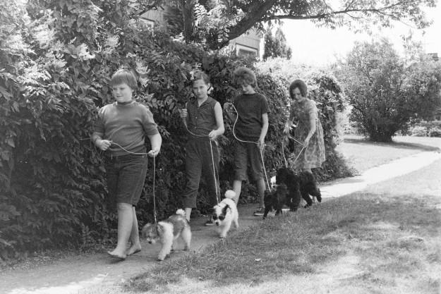 07/27/66 4 Girls Walking Dogs