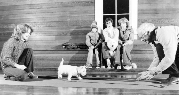 02/02/80 Dog Obedience Steve Zugschwerdt / Bremerton Sun