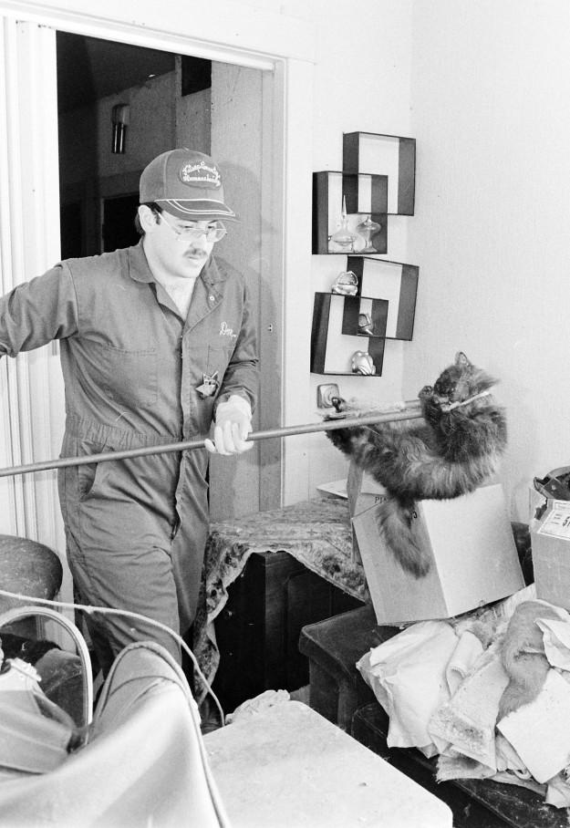 04/24/80 100 Cats Steve Zugschwerdt / Bremerton Sun