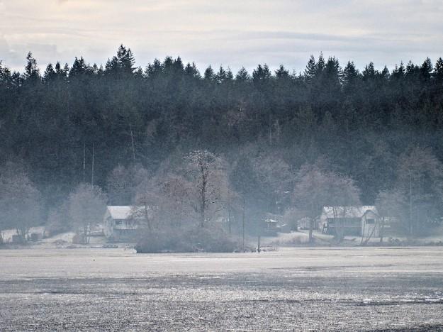 January Shoreline by Steve Johnson