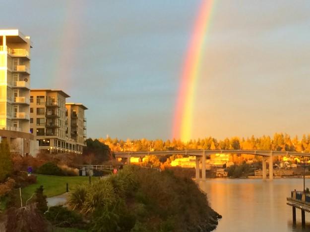 Marina Rainbows by Jaime Forsyth