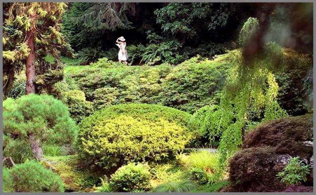 A woman makes her way past the Japanese Gardens during Thursday's Fourth Annual Garden Party at Bloedel Reserve on Bainbridge. MEEGAN M. REID | KITSAP SUN