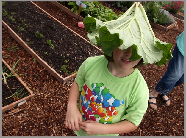 "Baeven Hoit, 9, wears a rhubarb leaf on her head as she wanders around Poulsbo's Rabb Park Youth Garden during the ""Worms in Our Garden"" activity on Monday. (MEEGAN M. REID/KITSAP SUN)"
