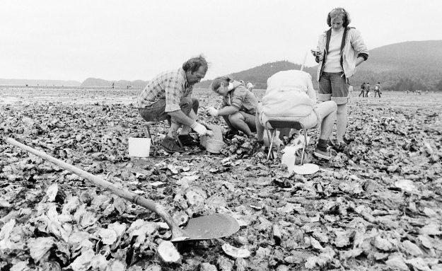 06/22/78 Geoducks Ron Ramey / Bremerton Sun