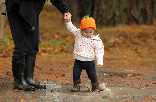 While wearing a festive pumpkin hat, Lillian Manuguid, 1, splashes in a mud puddle while cheering on the Kingston Cross Country team with her mother Karla during the Westside Classic Cross Country Championships at American Lake Golf Course in Lakewood, Wash. on Saturday, October 31, 2015. (MEEGAN M. REID / KITSAP SUN)
