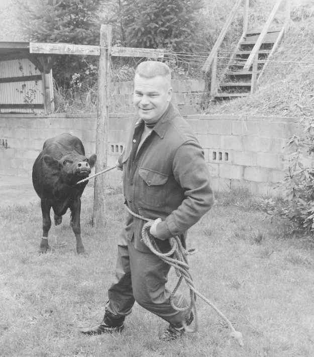 04/03/68 Cow On The Prowl