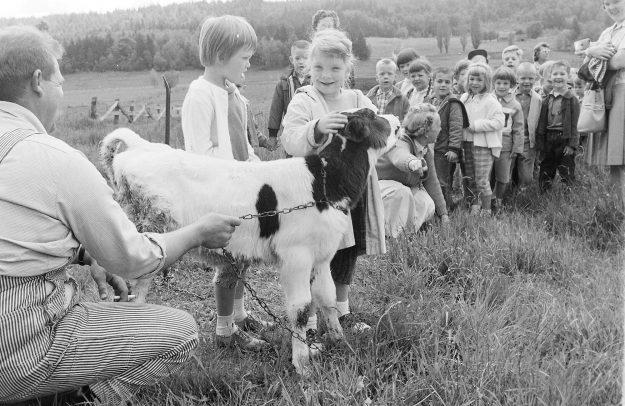 06/04/62 Dairy Farm Visit