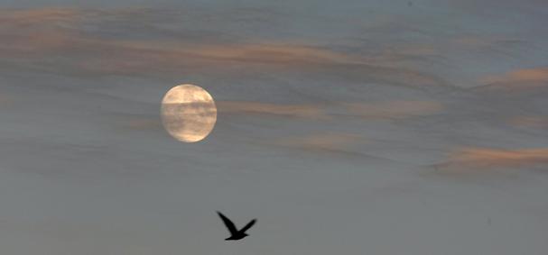 0929_kslo_moon