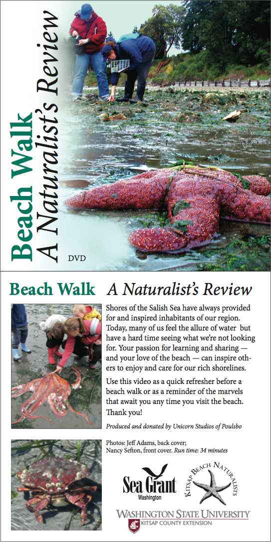 Beach Walk DVD front and back covers. By: Robyn Ricks, Washington Sea Grant